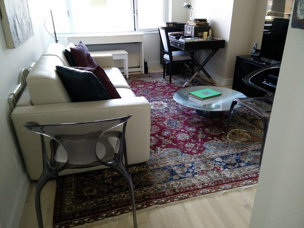 upper east side area rug in living room