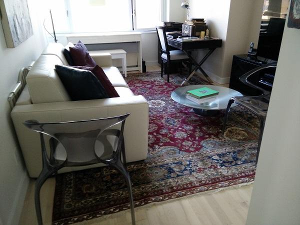 upper east side area rug in living room