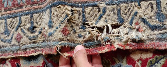 Mistakes Oriental Rug Owners Make and the Solution